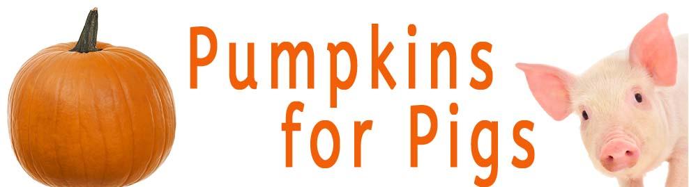 Pumpkins For Pigs